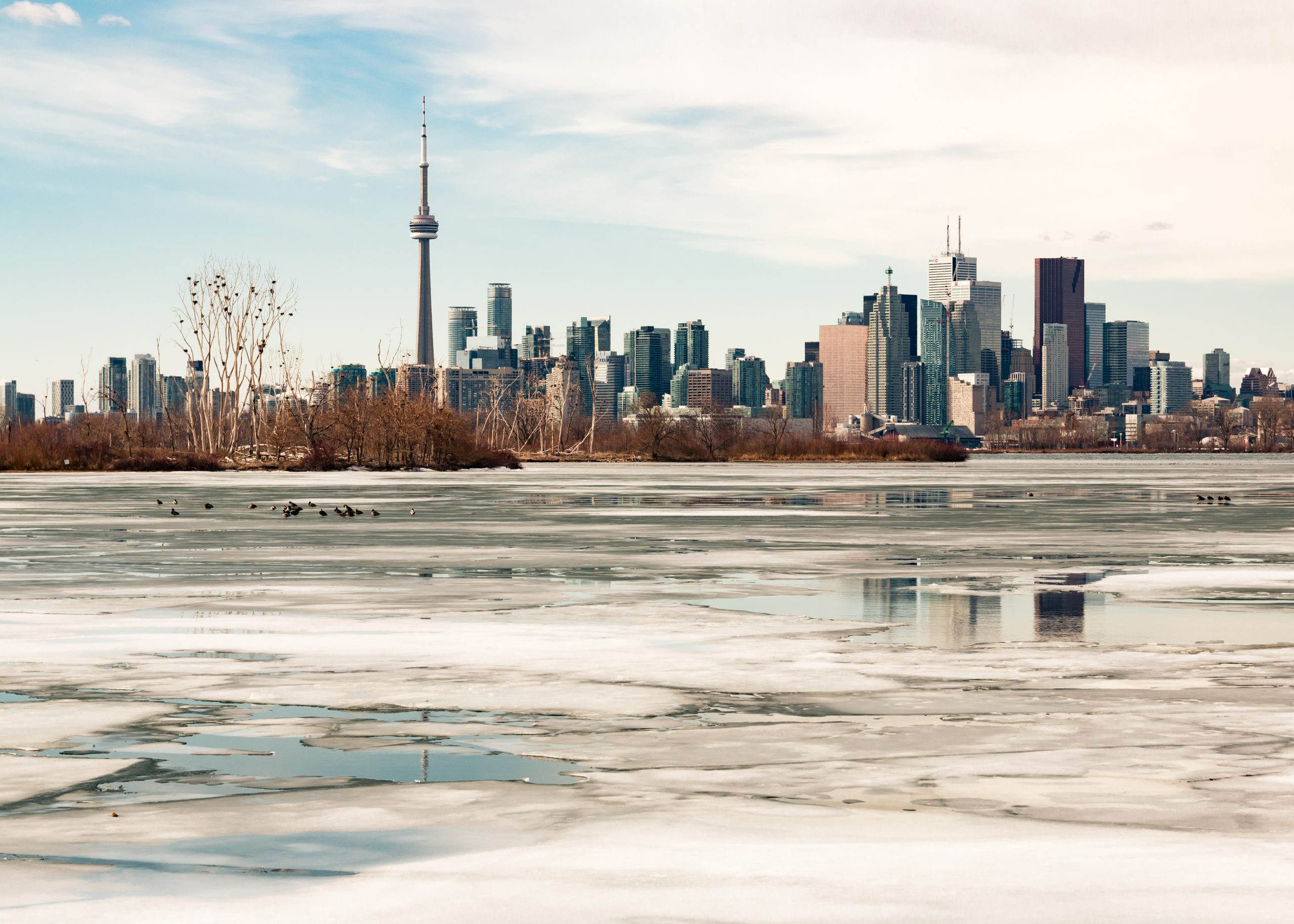 Image shows Toronto city in winter